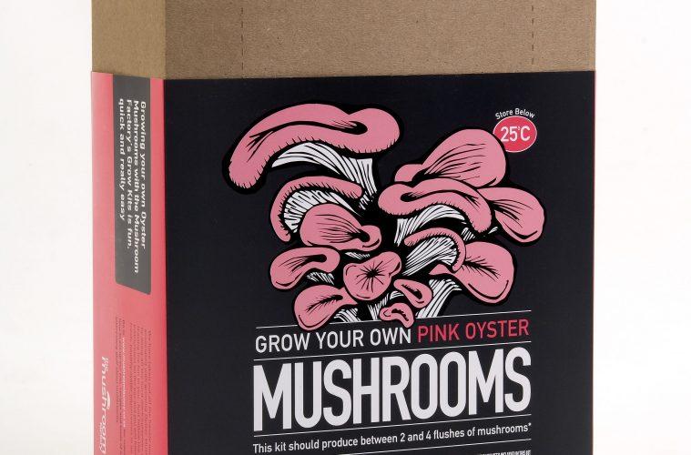 mushroom growing kit prize
